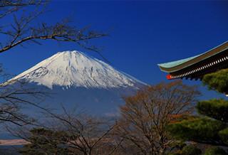 上海办理日本签证图片